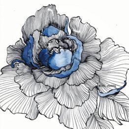 Originaux / Drawings